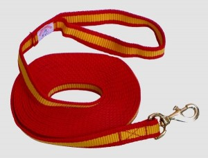 Longe aus Nylon Flachband, 6 Meter (RAG-33026-6)